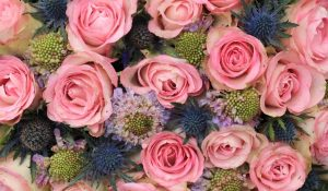 Navy Blue and Blush Pink flowers in a wedding