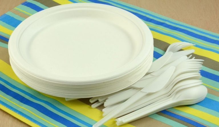 5 Times It's Ok To Use Disposable Plates at a Wedding